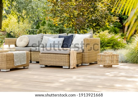 Green trees and wicker garden furniture in the backyard Royalty-Free Stock Photo #1913921668