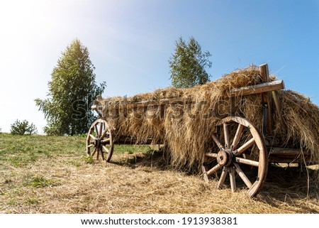 Old vintage rustic wooden ancient cart carriage with hay pile on green grass meadow field against clear blue sky on bright sunny day. Scenic rural countryside landscape with aged transport farm ranch Royalty-Free Stock Photo #1913938381