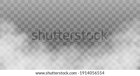 Fog or smoke isolated transparent special effect. White vector cloudiness, mist or smog background. PNG. Vector illustration