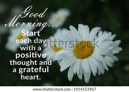 Morning inspirational quote - Good morning. Start each day with a positive thought and a grateful heart. On floral background of white daisy flowers in a daisies garden.