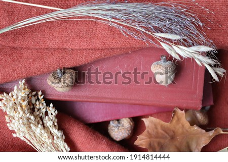 Beautiful picture, cozy atmosphere, red books wrapped in a warm woolen sweater, composition with dried flowers and herbs, autumn picture