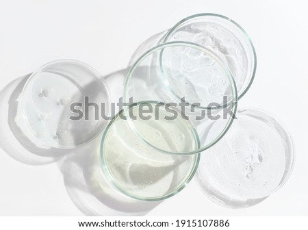 glass Petri dishes witn agar substrat on a laboratory table. sterile lab dishes ready for tests. analysis and chemical experiment. cell culture growing equipment. top view. medical lab concept. Royalty-Free Stock Photo #1915107886