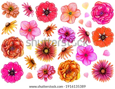 Set of watercolor buds of garden flowers with petals. Hand drawn illustration isolated on white background. Beautiful floral elements for creating invitations, labels, packaging.
