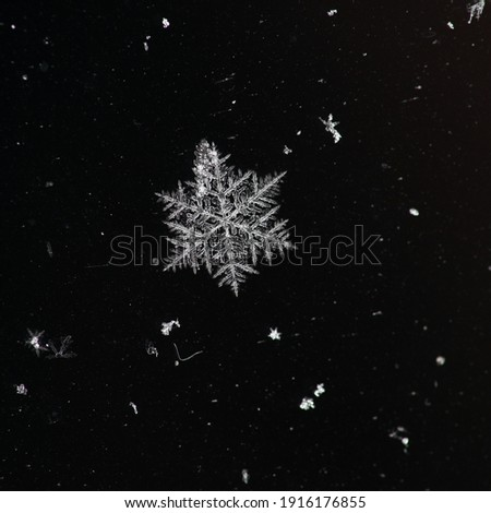 Winter snowflakes magnified. Snowflakes on a dark background. Royalty-Free Stock Photo #1916176855