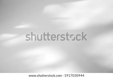Leaves natural shadow overlay on white texture background, for overlay on product presentation, backdrop and mockup, summer seasonal concept Royalty-Free Stock Photo #1917030944