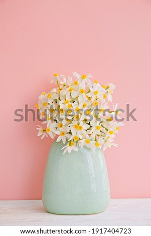 Lush bouquet of white-yellow daffodils in vintage turquoise vase isolated on pink background. Tender minimalistic spring flowers composition. Top view, copy space for text, flat lay, close up. Royalty-Free Stock Photo #1917404723