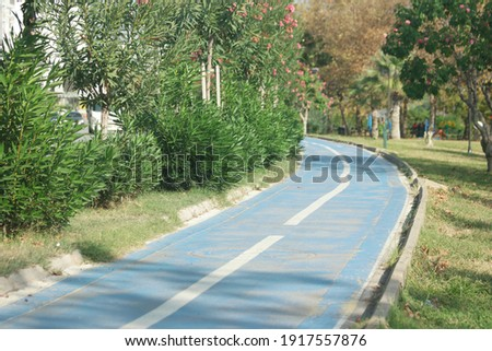Bicycle path between tropical plants on the embankment of Turkey. Embankment of the resort city of Turkey. Royalty-Free Stock Photo #1917557876