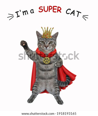 A gray cat dressed in a gold crown and a red cloak. I'm a super cat. White background. Isolated.