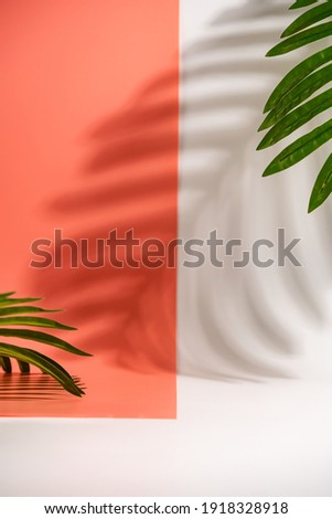 Cosmetics product advertising stand. White and pink background with with palm leaves and shadows. Empty place to display product packaging. Mockup Royalty-Free Stock Photo #1918328918