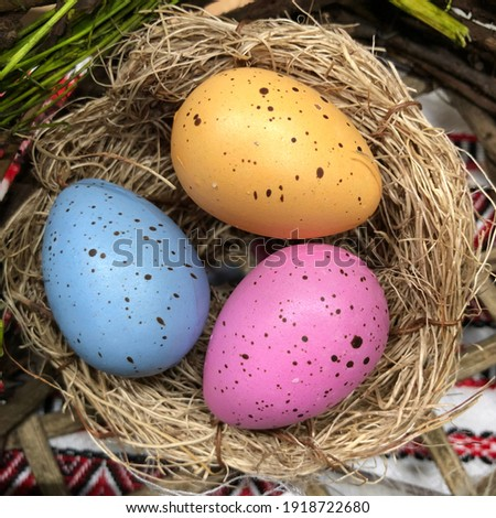 Macro photo Easter eggs. Stock photo color Easter eggs in nest