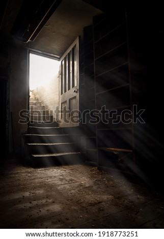 Dark and creepy wooden cellar door open at bottom of old stone stairs bright sun light rays shining through on floor making shadows and scary sinister abandoned basement room underground Royalty-Free Stock Photo #1918773251