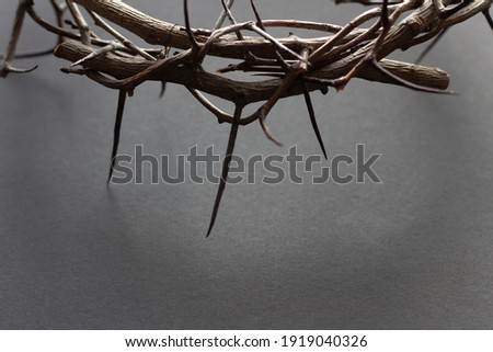 Edge of crown of thorns with copy space on black background Royalty-Free Stock Photo #1919040326