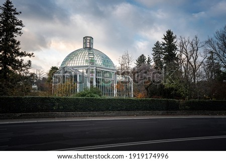 Botanical Garden Greenhouse - Geneva, Switzerland Royalty-Free Stock Photo #1919174996
