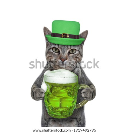 A gray cat in a hat drinks green beer. St. Patrick's Day. White background. Isolated.