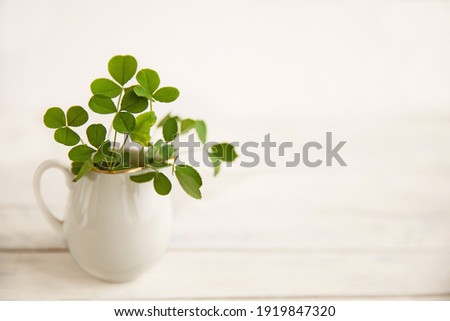 green clover leaves in a white jug on a white wooden background