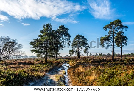 Rural field trail outdoors landscape. Rural trail outdoors. Field trail on rural outdoor. Rural nature field trail outdoor Royalty-Free Stock Photo #1919997686