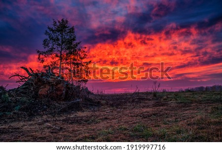 Sunset cloudy sky outdoors scene. Dramatic sky at sunset. Sunset dramatic sky. Sunset dramatic sky clouds Royalty-Free Stock Photo #1919997716