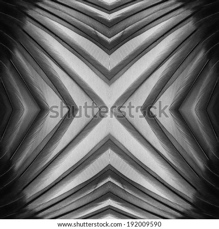 seamless abstract pattern, black and white feather texture. #192009590