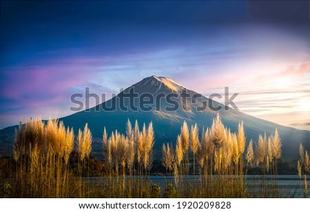 Mountain peak snow landscape. Mountain peak view. Mountain peak scene. Mountain snowy peak panorama Royalty-Free Stock Photo #1920209828