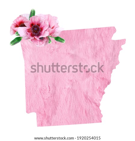 Political divisions of the US. Patriotic clip art in tender pink colors. State Arkansas