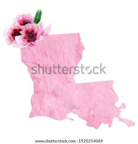 Political divisions of the US. Patriotic clip art in tender pink colors. State Louisiana