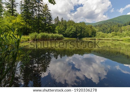 Mountain lake in forest. Water surface reflecting landscape and sky with clouds. Persevered and protected nature in Poloniny national park, eastern Slovakia. Royalty-Free Stock Photo #1920336278