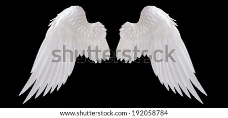 white angel wing isolated Royalty-Free Stock Photo #192058784