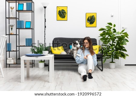 The happy sitter of the dog is sitting on the floor in the living room and the dog is lying on the sofa and paws on her shoulder. Intelligent Border Collie Sheepdog. Modern interior design of the