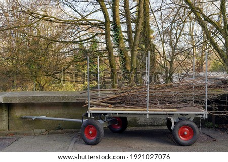 Handcart of wheelbarrow loaded with tree branches and twigs removed from the  trees in garden work in the spring. The plant waste is neatly arranged on the cart with rubber wheels. Royalty-Free Stock Photo #1921027076