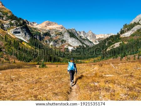 A Woman Hiker Walks Through Spider Meadows on a Sunny Day. Glacier Peak Wilderness, Cascade Mountains, Washington. Royalty-Free Stock Photo #1921535174