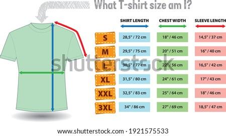 Vector illustration of unisex short sleeve t-shirts - sizing chart.