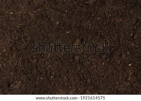 Texture of fertile soil top view. Spring gardening season concept. Royalty-Free Stock Photo #1921614575
