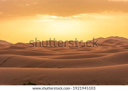 Beautiful landscape of the Sahara Desert, erg Chebbi, Merzouga, morocco Royalty-Free Stock Photo #1921945103