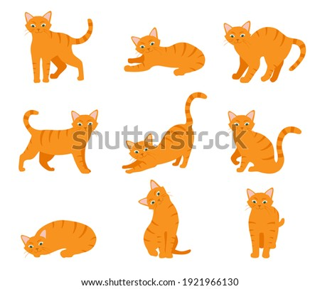 Cartoon cat set with different poses and emotions. Cat behavior and body language. Ginger kitty in simple style, isolated raster illustration.