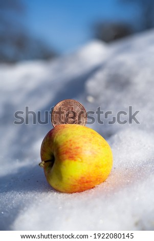bitcoin in an apple in the snow close-up.