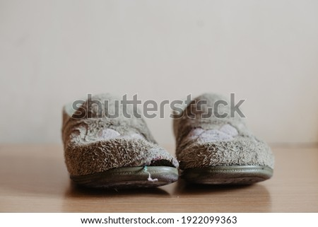 Two very worn, torn and widely used house slippers with a hole. Women's or girl's house slippers Royalty-Free Stock Photo #1922099363