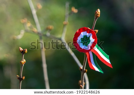tricolor rosette on spring tree with bud symbol of the hungarian national day 15th of march Royalty-Free Stock Photo #1922148626