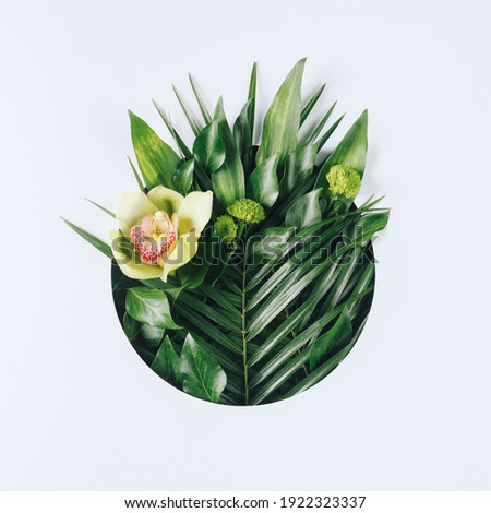 Creative minimal arrangement with green palm leaves and orchid flower on bright white background. Creative nature or spring bloom concept. Flat lay, top view. Royalty-Free Stock Photo #1922323337