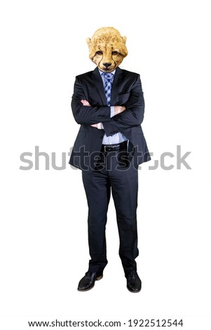 Contemporary art collage concept. Picture of confident businessman with head of cheetah standing in the studio. Isolated on white background