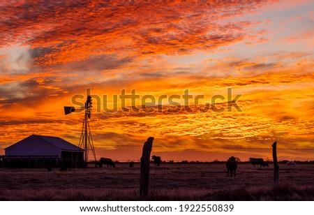Sunset farm field landscape.. Cloudy sky sunset farm. Sunset farm field landscape. Farm at sunset Royalty-Free Stock Photo #1922550839