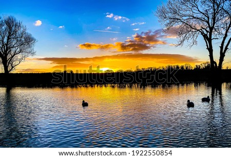 Sunrise forest lake water landscape. Beautiful sunrise over nature lake. Ducks in forest lake at sunrise. Sunrise forest lake landscape Royalty-Free Stock Photo #1922550854
