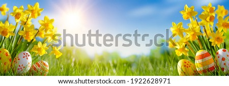Easter eggs and daffodil flower on meadow Royalty-Free Stock Photo #1922628971