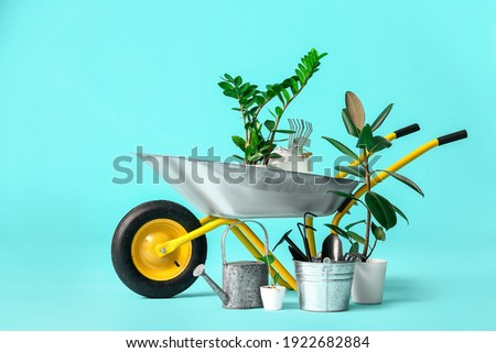 Set of gardening supplies on color background Royalty-Free Stock Photo #1922682884