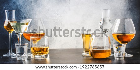 Strong alcoholic drinks in glasses in assortment: vodka, cognac, tequila, brandy and whiskey, grappa, liqueur, vermouth, tincture, rum. Gray bar counter with copy space Royalty-Free Stock Photo #1922765657