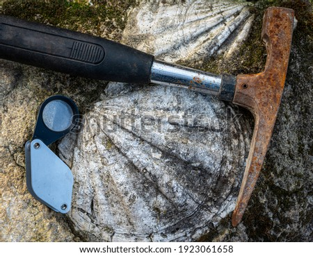 geological hammer or rock pick ,with fossil shell  in limestone and hand lens . Royalty-Free Stock Photo #1923061658