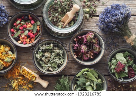 Bowls and jars of dry medicinal herbs. Healing herbs assortment, top view. Alternative medicine. Royalty-Free Stock Photo #1923216785