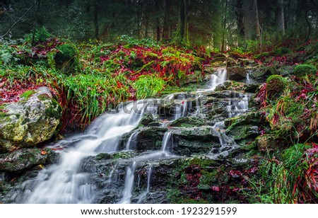 River creek waterfall flowing view. Forest waterfall rocks. Waterfall in forest. Forest waterfall view Royalty-Free Stock Photo #1923291599