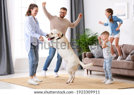 Full body of happy playful family: parents and little kids with cute purebred Labrador retriever dog having fun and dancing together in living room at home Royalty-Free Stock Photo #1923309911