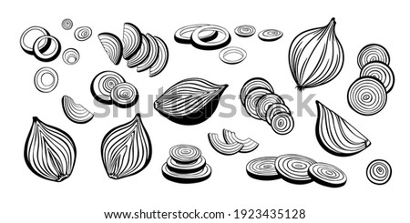 Big vector set of onion collection. Onion slices, rings and cut in half onion bulb. Sketch and monochrome outline drawing. Royalty-Free Stock Photo #1923435128