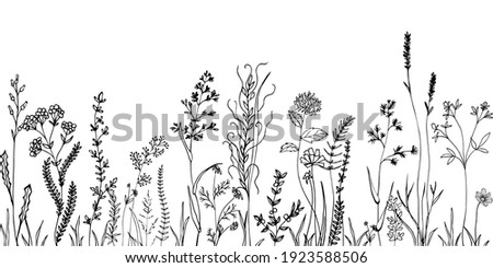 Sketch weeds, herbal, flowers and cereals. Trend elements design. Royalty-Free Stock Photo #1923588506